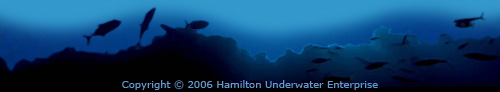 Copyright 2005 Hamilton Underwater Enterprise
